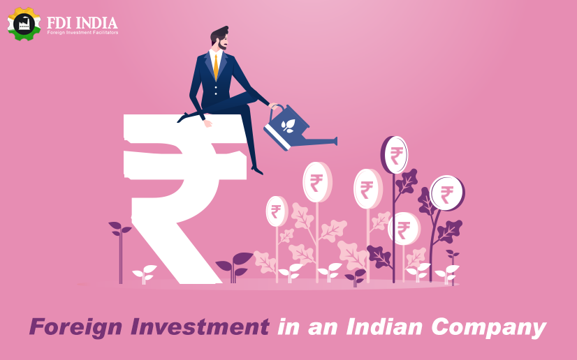 foreign investment in an Indian Company